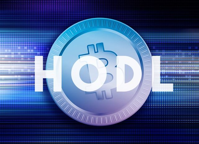 bitcoin hodl meaning